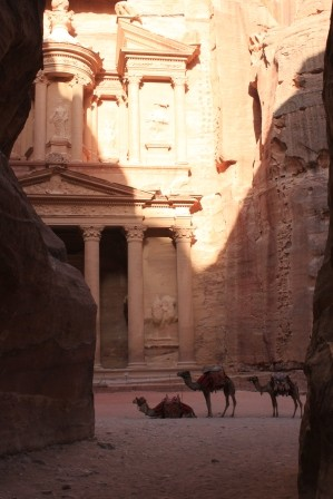 Wan a camel ride- anybody??